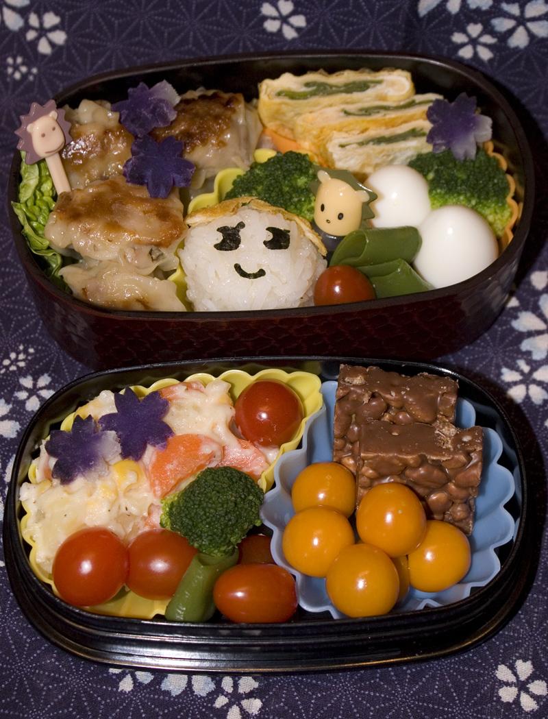 Oben: Gyoza, Onigiri, Tamagoyaki mit Zuckerschoten, Wachteleier, Brokkoli. Unten: Kartoffelsalat, Cherrytomaten, Physalis, Mini-Nippon.